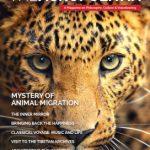 Revistas Digitales: octubre 2015