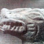 ¿Viven animales prehistóricos?