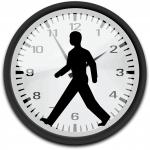 Los relojes biológicos