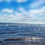 Simbolismo de… el mar