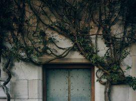 Nueva Acr-opolis - Símbolo Puerta