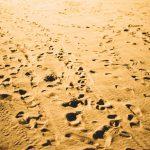 Anécdotas filosóficas: Filosofía y casualidad
