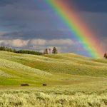 Simbolismo de… el arco iris