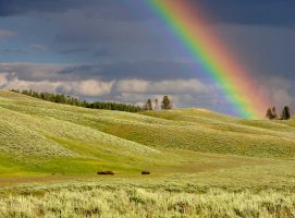 Símbolo arco iris