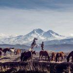 El caballo en la tradición turca